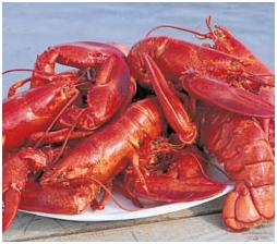 Lobsters - someone elses photo