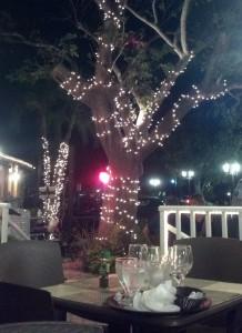 Bar & Bistro @ Marek's Terrace, Marco Island, FL